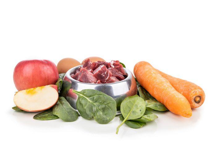 Alimentazione di cani e gatti: ecco perchè evitare i cereali